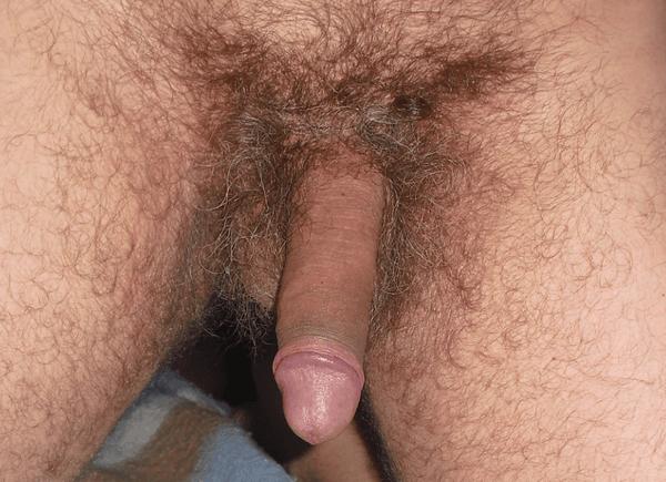 sexe crade sexe d un homme