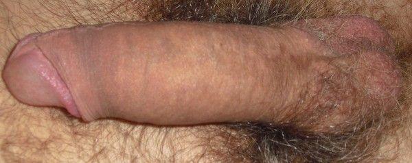 sex homme